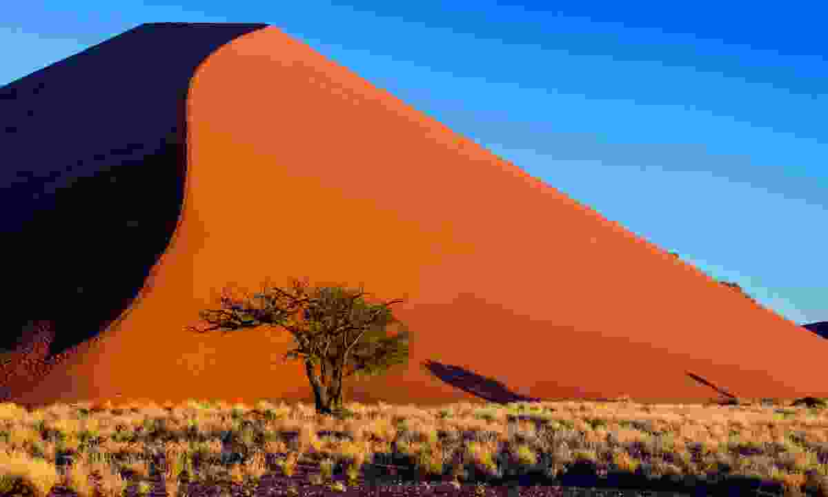 Sunset on the dunes at Sossusvlei, Namibia (Dreamstime)