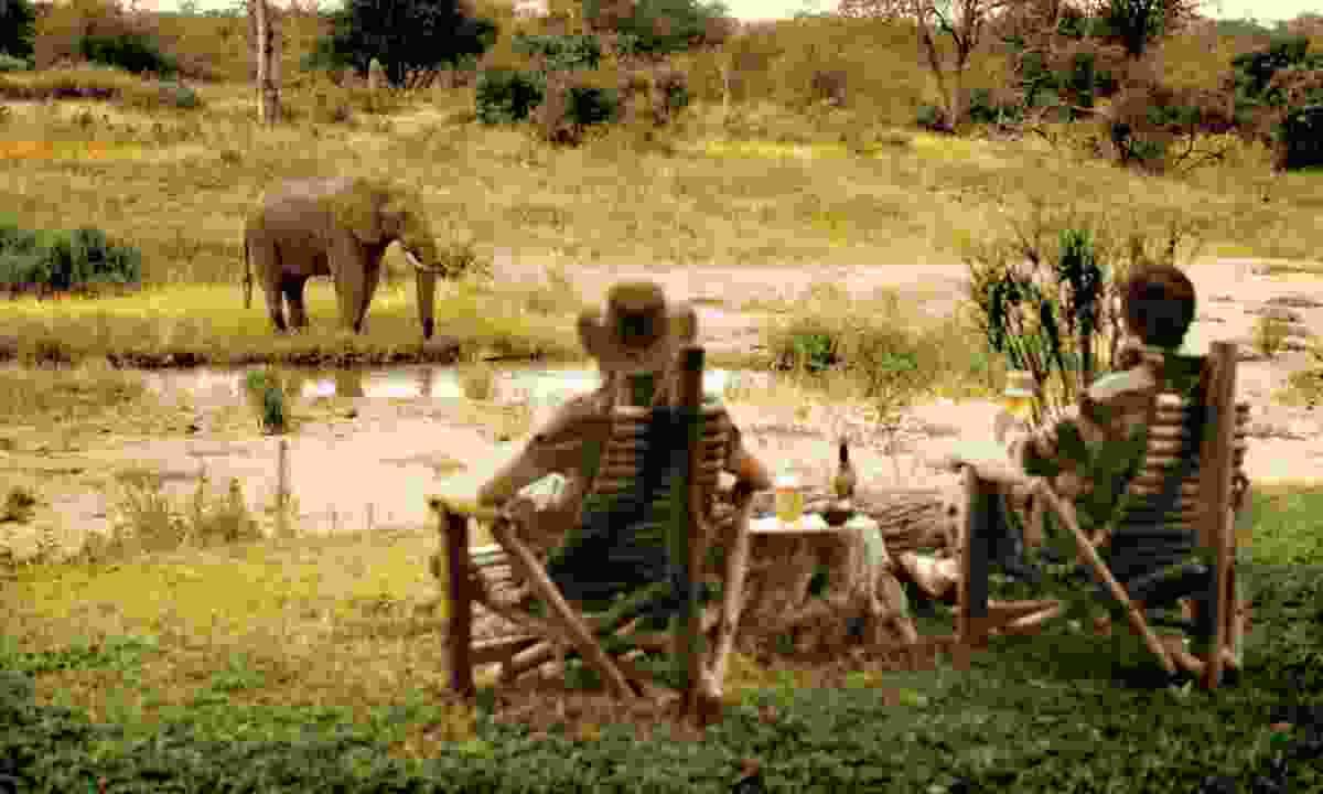 Motswari Private Game Reserve (newmarkhotels.com)
