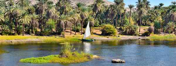 A felucca in Aswan, Egypt, on The Nile (Dreamstime)