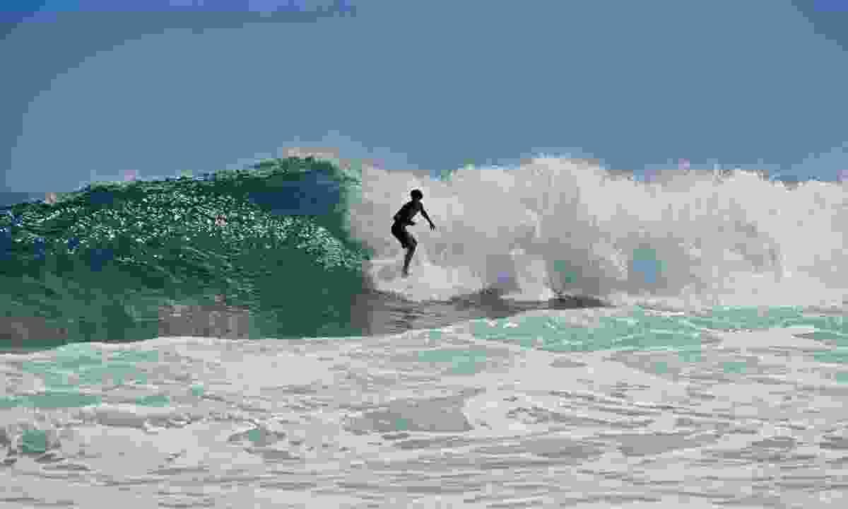 Surfing on Puerto Viejo beach shores (Dreamstime)