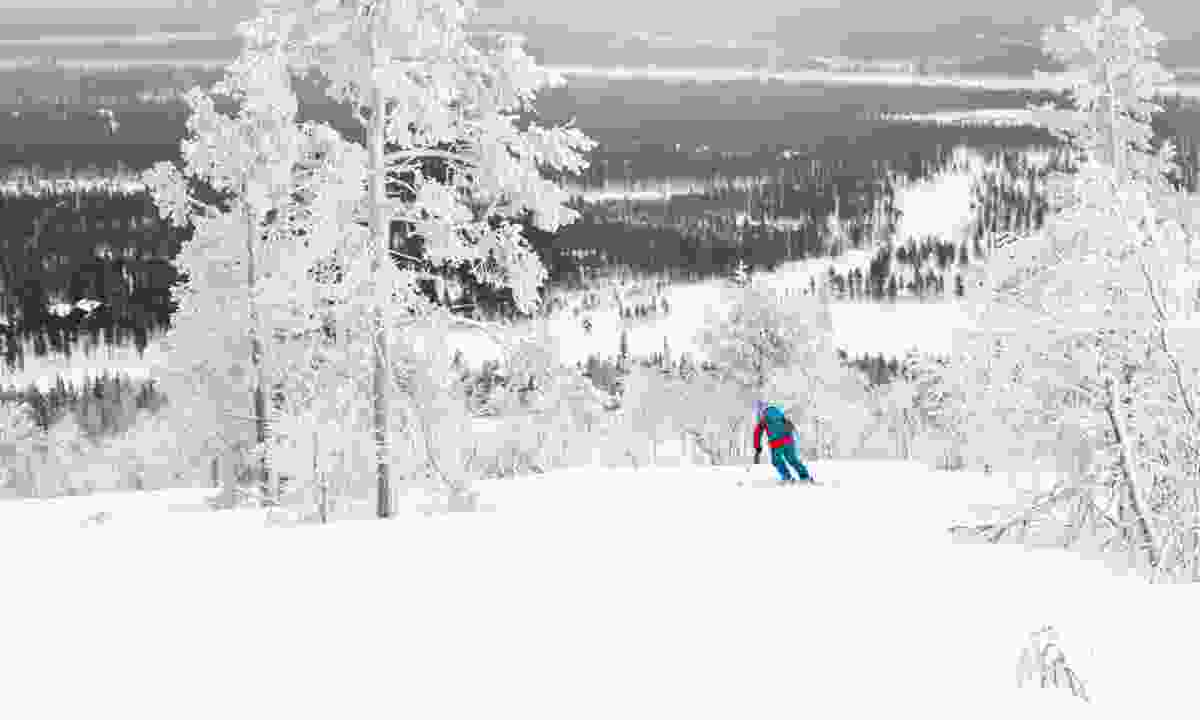 Skiing in Finland (Dreamstime)