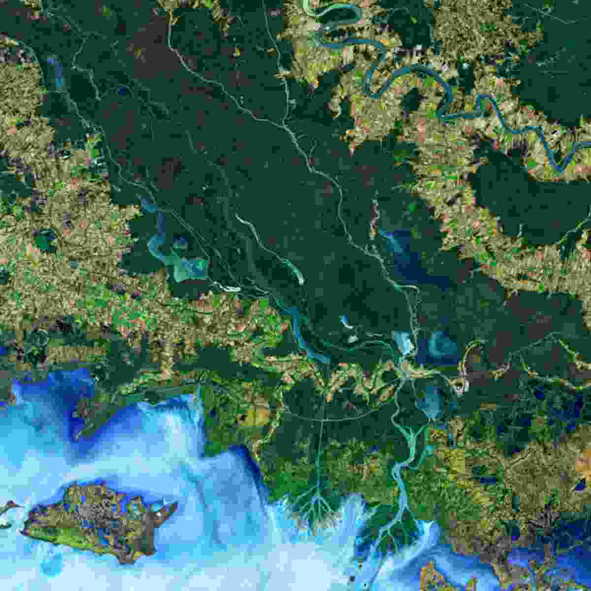 Mississippi River, USA (NASA Goddard Space Flight Centre and U.S. Geological Survey)