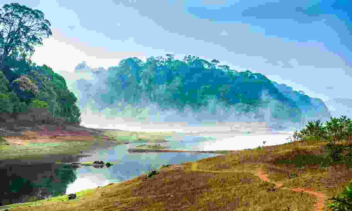 A misty morning over Periyar National Park (Shutterstock)