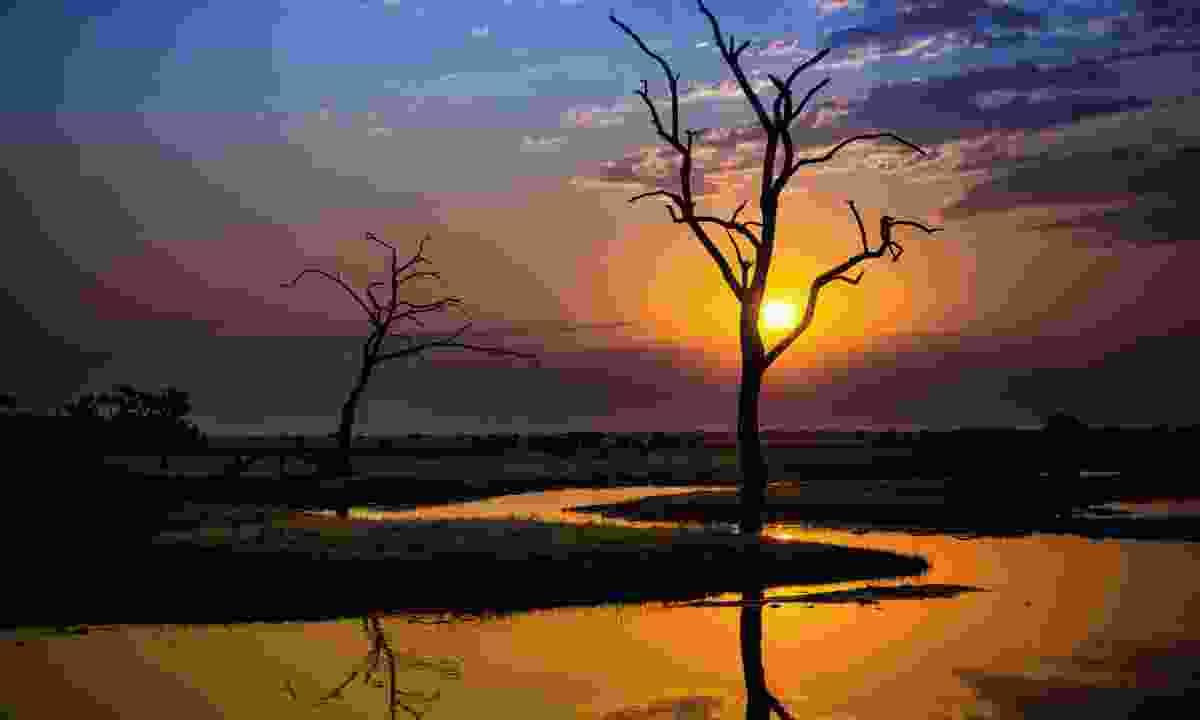 Chobe National Park at sundown (Shutterstock)