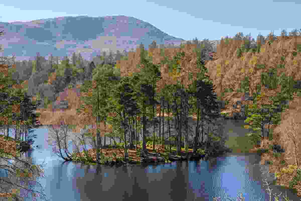 A breathtaking view of Tarn Hows lake in the Lake District, England (Dreamstime)