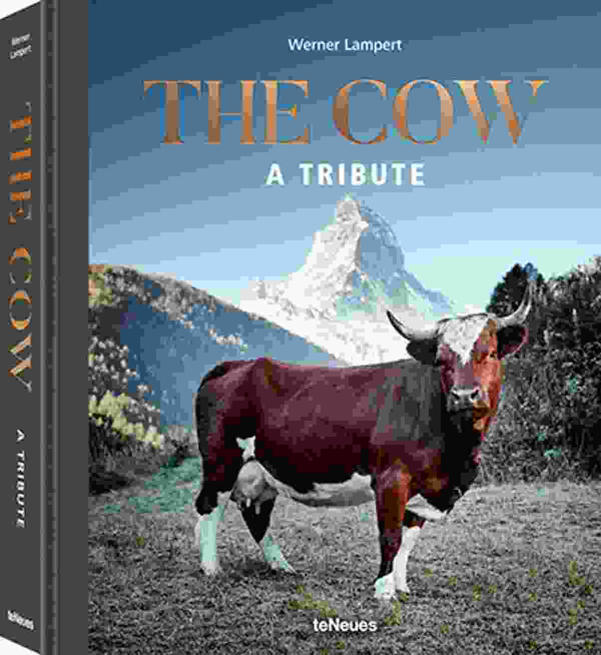 © The Cow - A Tribute by Werner Lampert, published by teNeues, www.teneues.com, Evolèner, Valais, Switzerland, © Werner Lampert GmbH, (Photo Ramona Waldner)