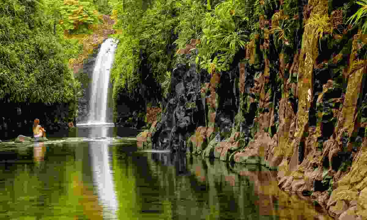 Wainibau Waterfall in Fiji (Shutterstock)