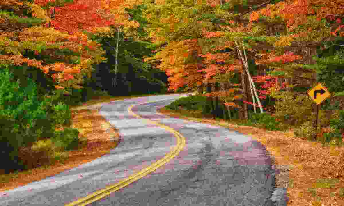 Winding road autumnal road in Canada (Dreamstime)