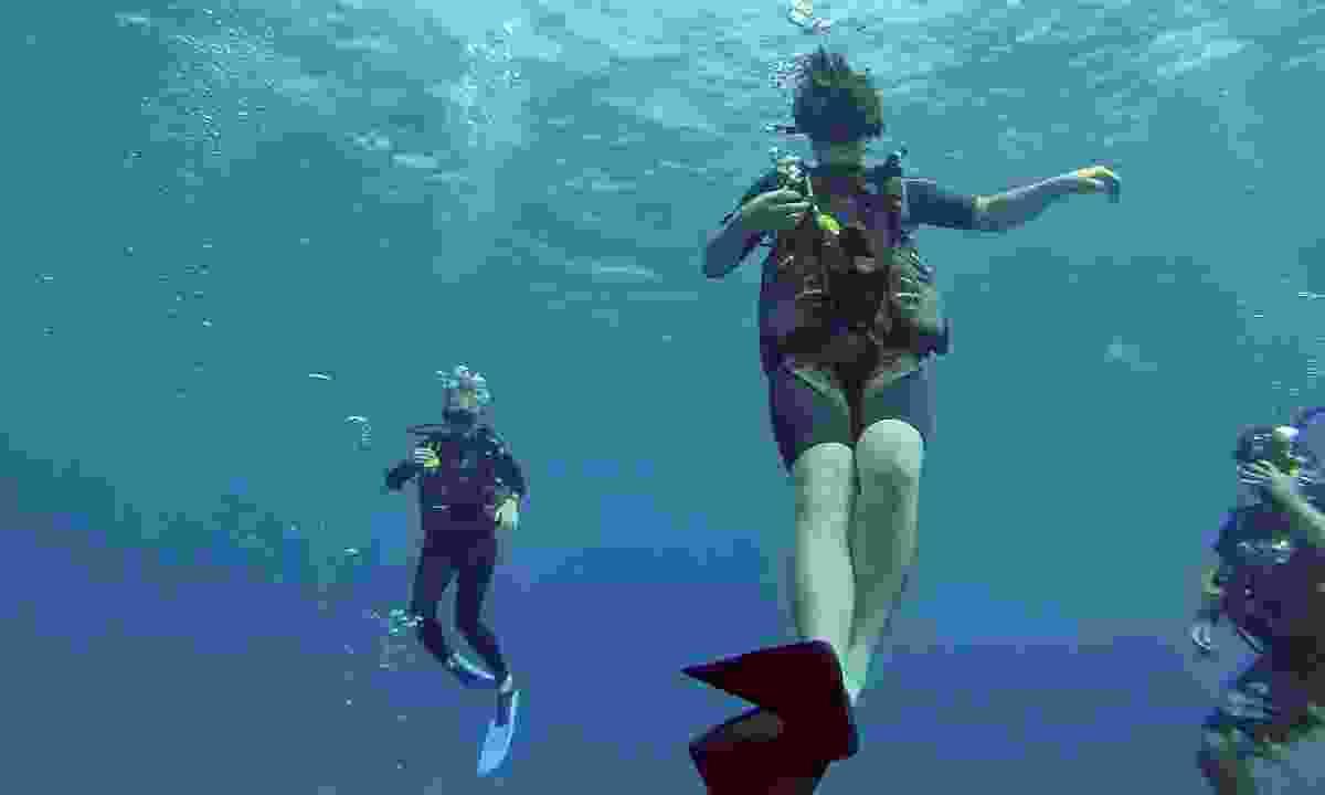 Learning to dive in Utila (Shutterstock)