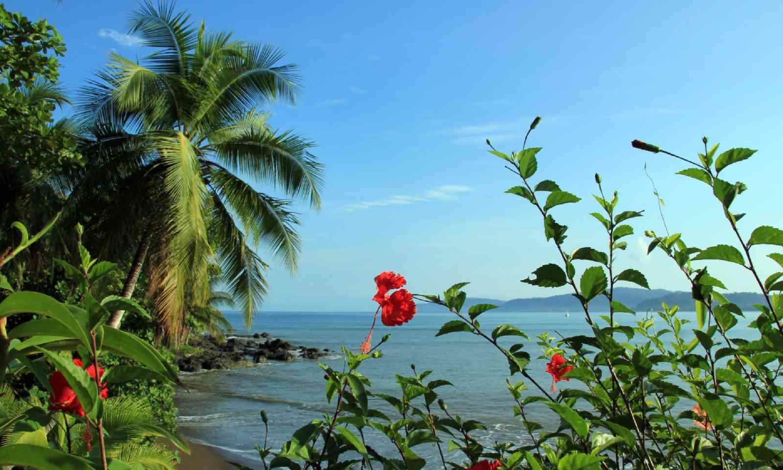 Drake Bay, Osa Peninsula (Shutterstock)