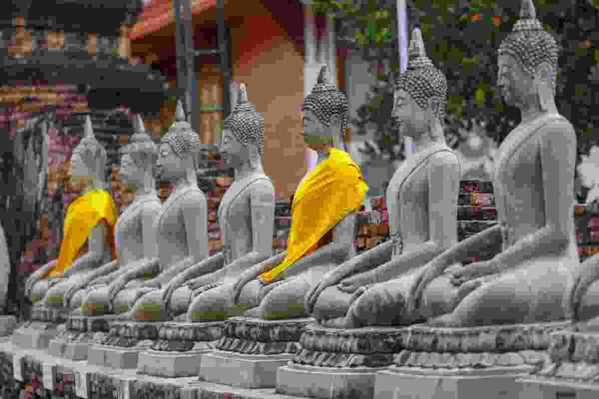 Buddha statues draped in yellow in Ayutthaya (Sanghamitra Sarkar)