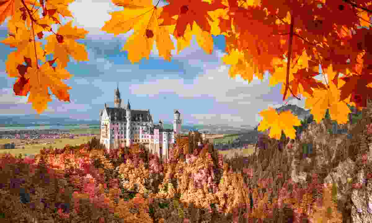 Neuschwanstein castle framed by autumn leaves (Dreamstime)