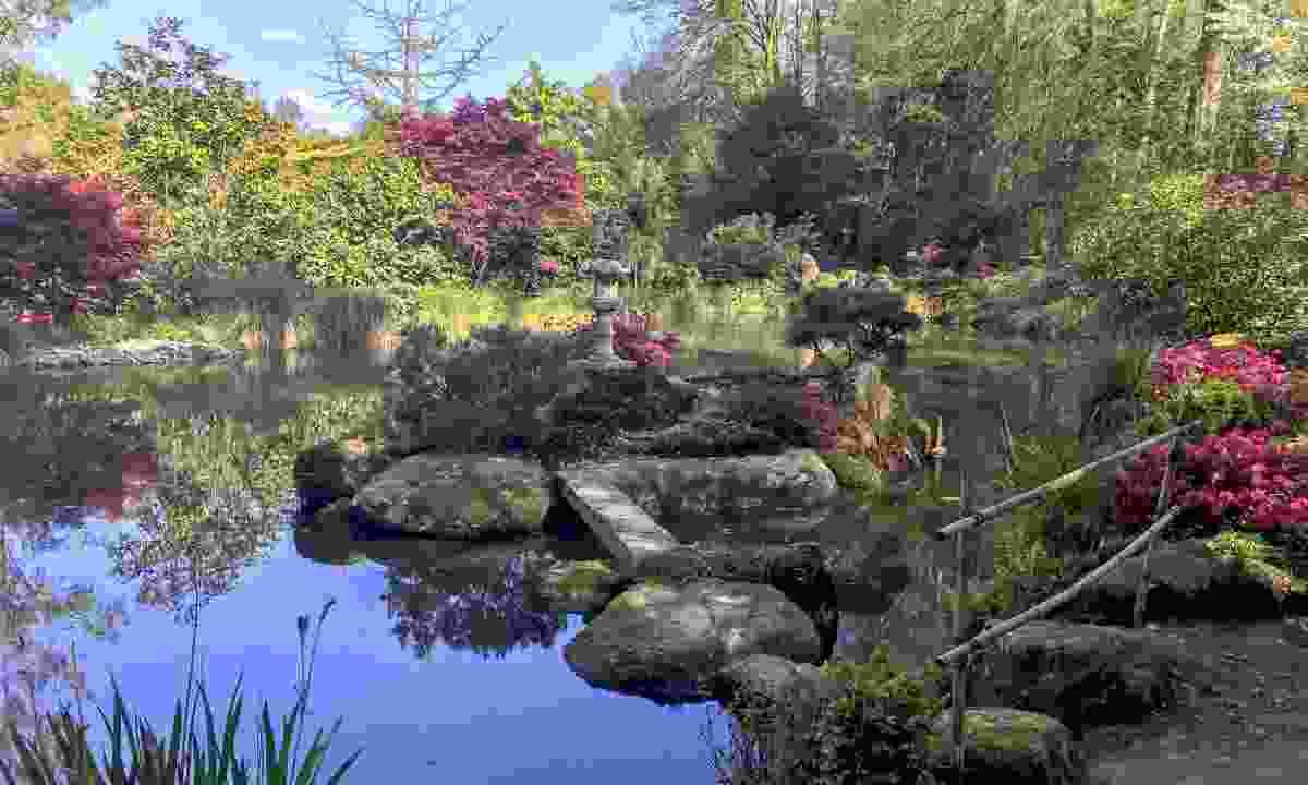 Le Châtellier garden (Donatienne Guillaudeau)