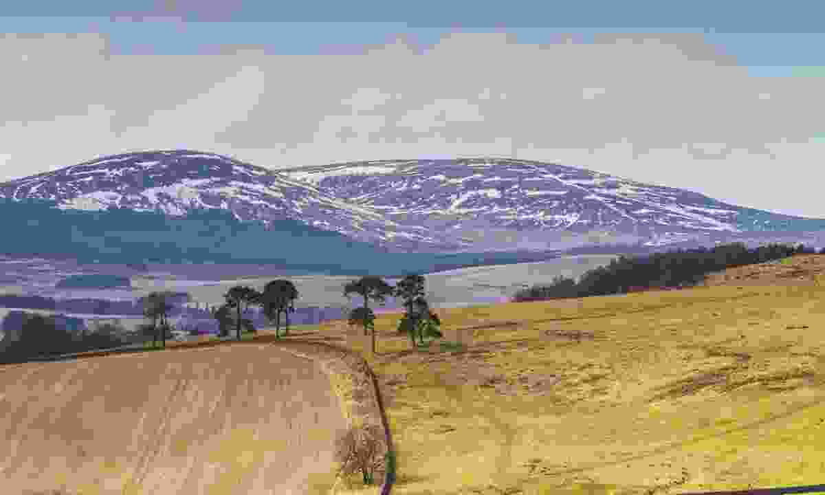 Cheviot Hills with a light dusting of snow (Dreamstime)