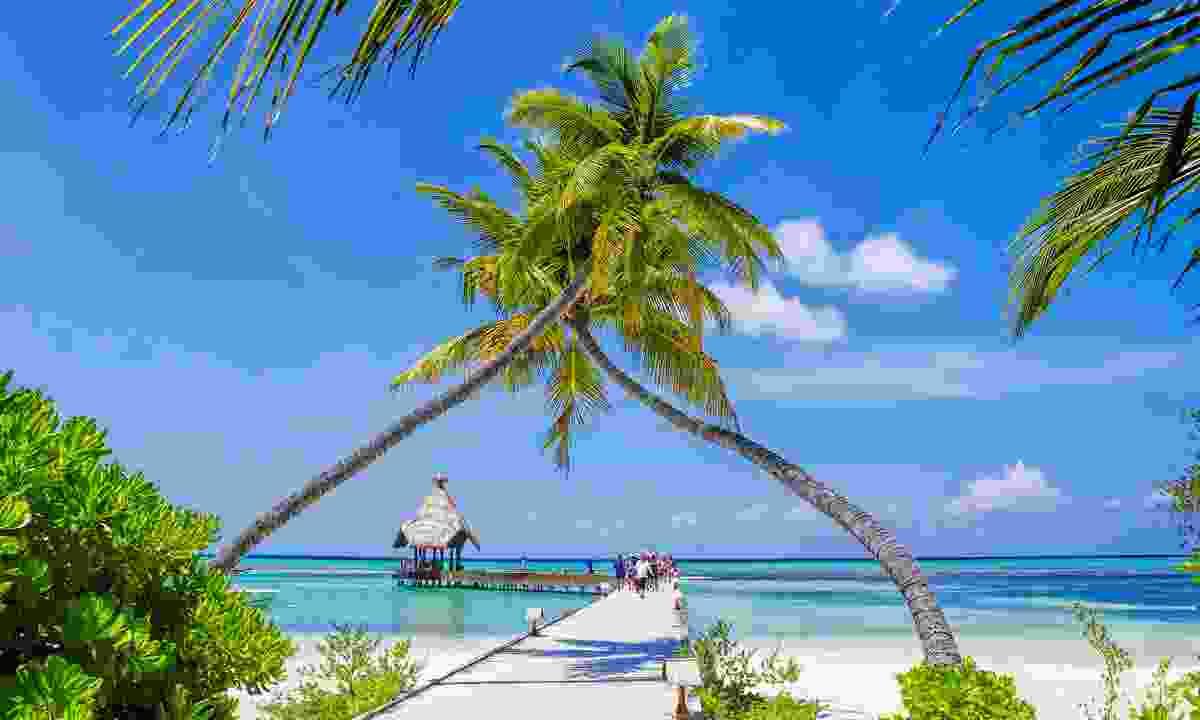 The Maldives (Dreamstime)