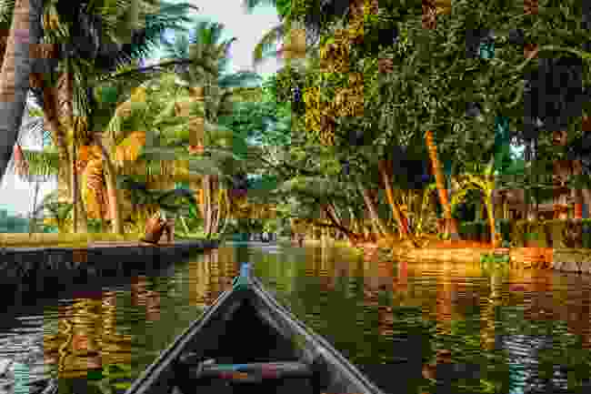 Kerala's backwaters, India (Shutterstock)