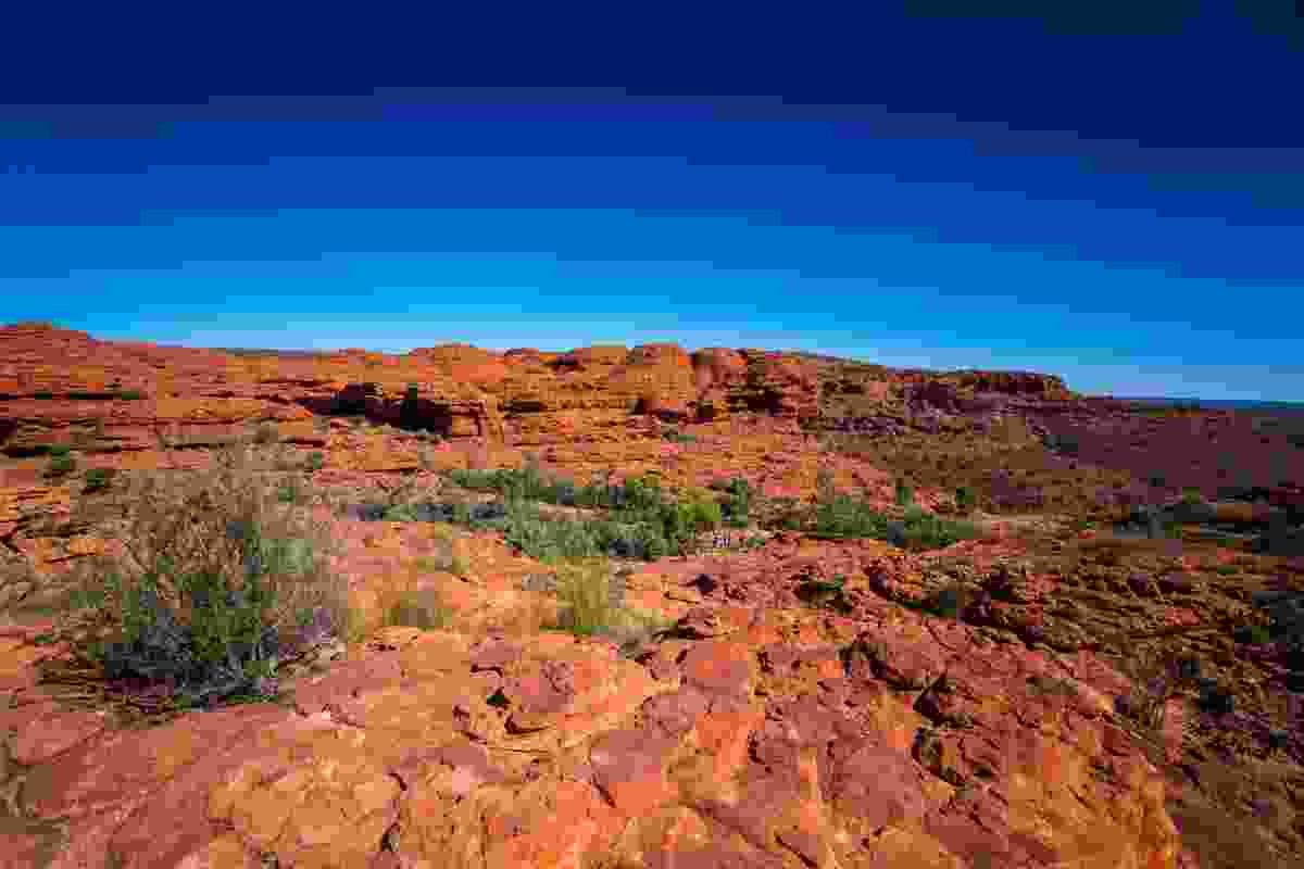Kings Canyon in the Australian Outback (Dreamstime)
