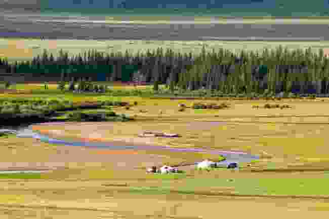 The valley of the River Delger Mörön, in northern Mongolia (Shutterstock)