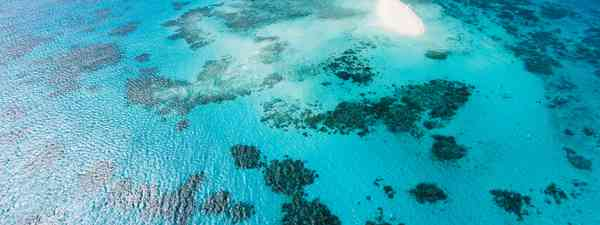 Great Barrier Reef (Dreamstime)