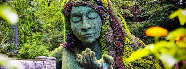Atlanta botanic gardens (Shutterstock)