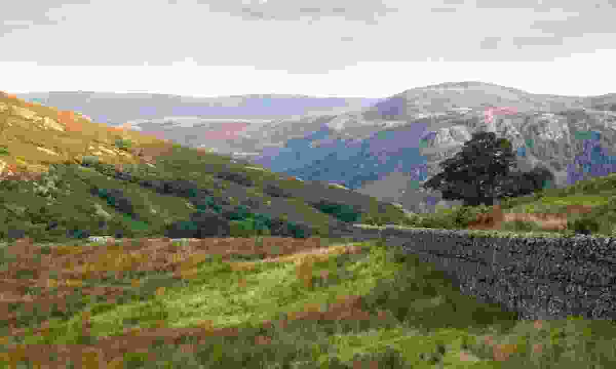 Borrowdale Valley, Cumbria (Dreamstime)