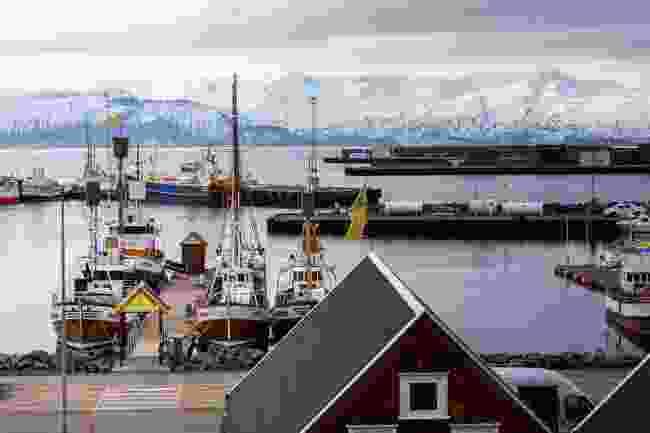 Húsavík's picturesque harbour (Shutterstock)