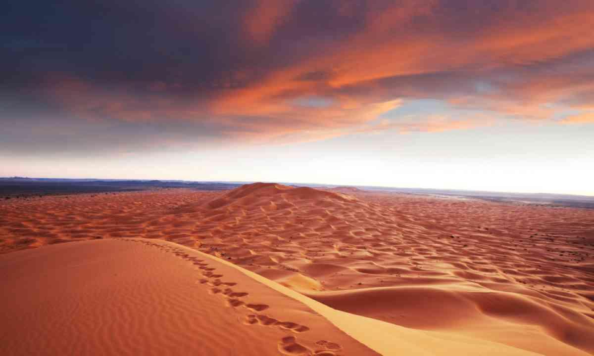 Sahara desert (Shutterstock)