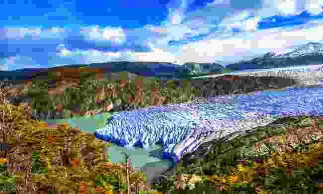 The giant Grey Glacier (Shutterstock)