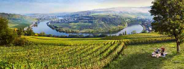 Luxembourg's best wineries and vineyard tours
