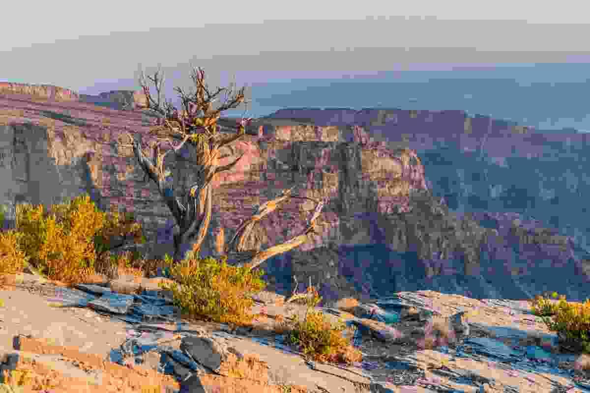 The Wadi Ghul Canyon (Shutterstock)