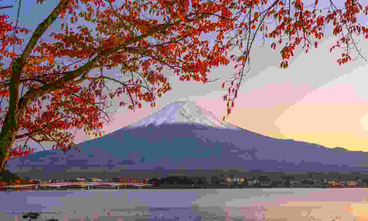 Mt Fuji framed by autumn leaves (Dreamstime)