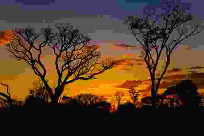 Sunset at Tsodilo Hills, Botswana (Dreamstime)