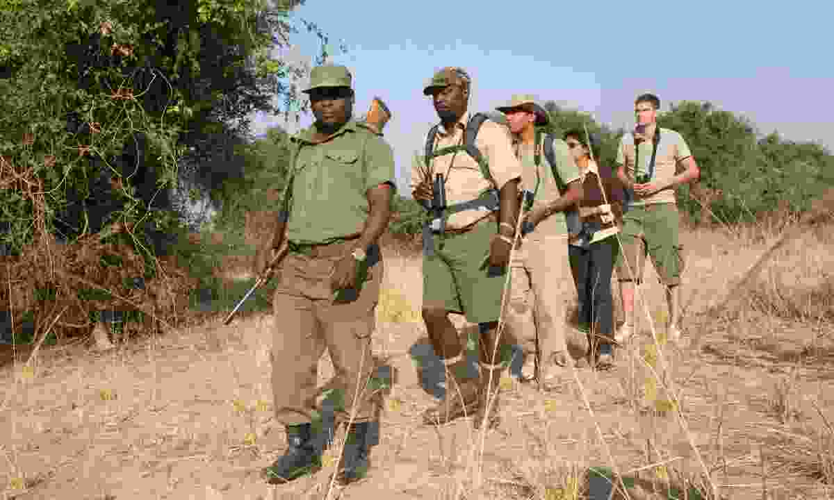 South Luangwa National Park, where superbly knowledgeable guides lead some of Africa's best walking safaris (Lyn Hughes)