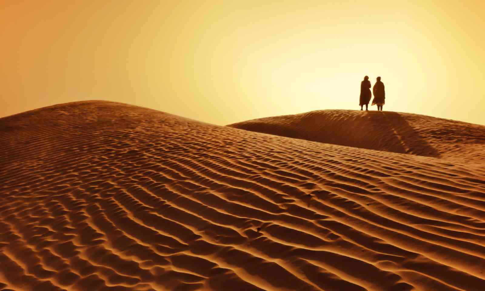 A couple in the Sahara desert (Shutterstock)