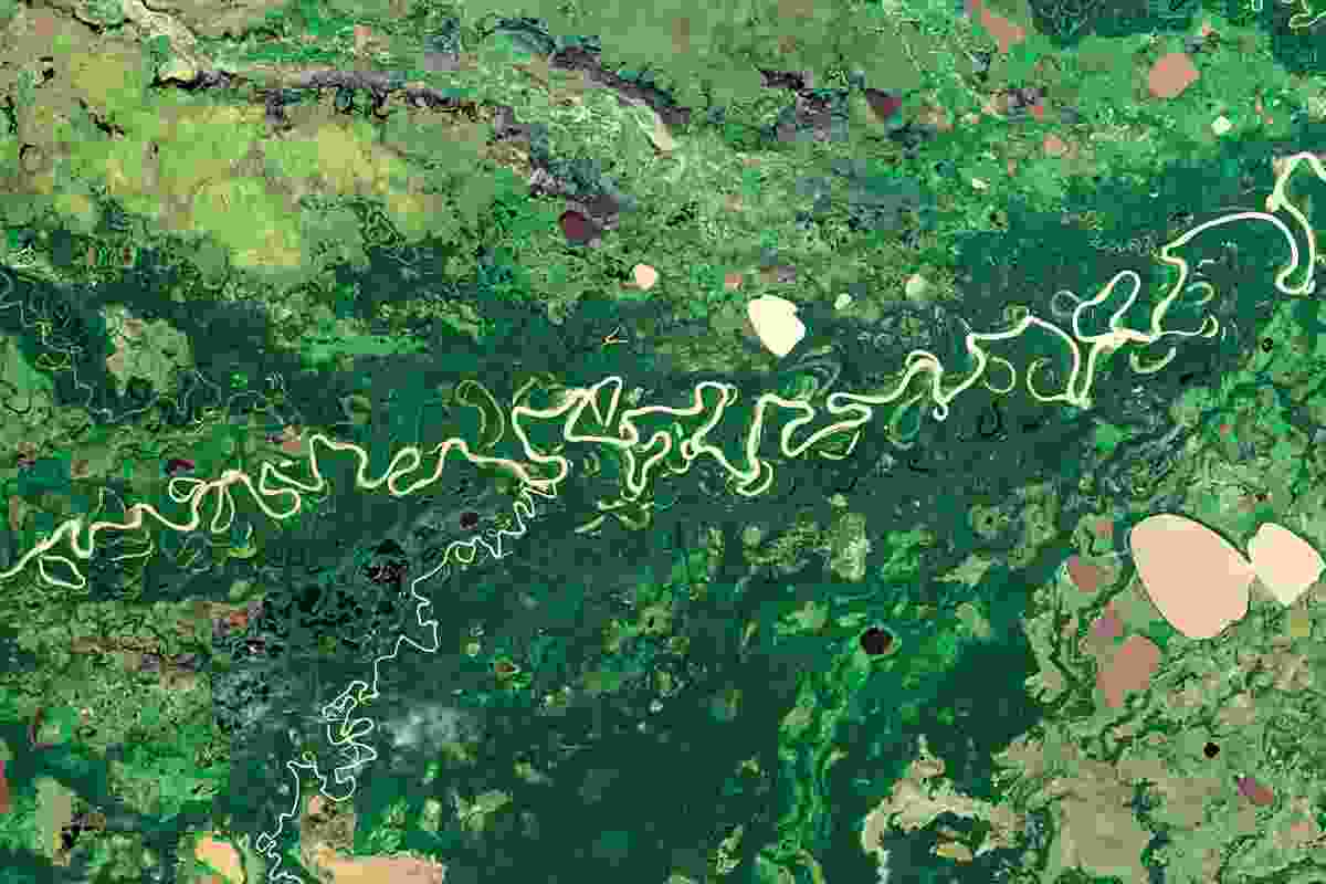 The Rio Mamoré meanders through the Amazon Basin (NASA Goddard Space Flight Centre and U.S. Geological Survey)