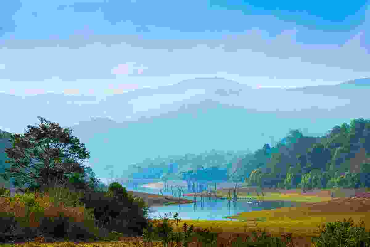 Periyar National Park, Kerala, India (Dreamstime)