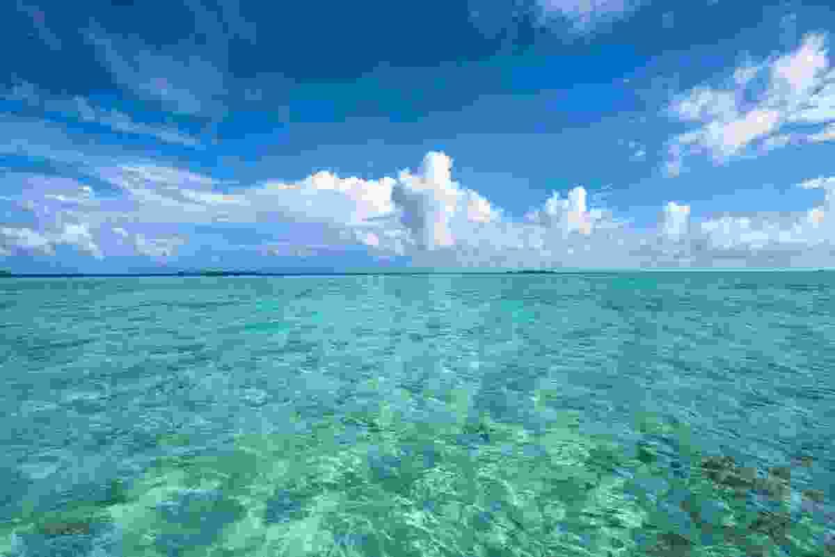 Pacific Ocean (Shutterstock)