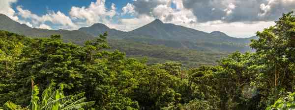 Best things to do in Dominica (Shutterstock)