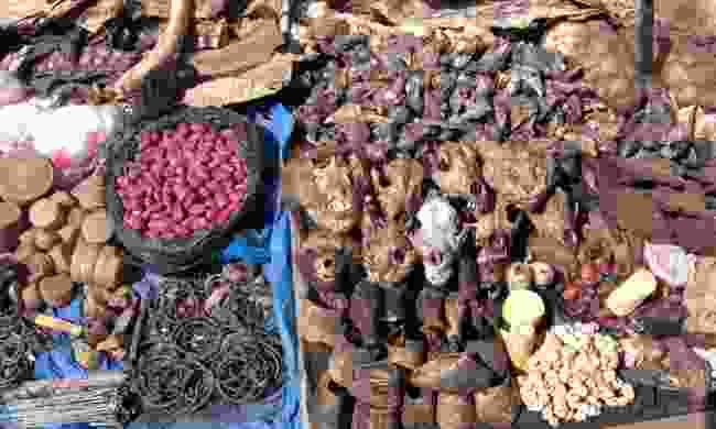 What's for sale at a Voodoo Fetish Market, West Africa (Shutterstock)