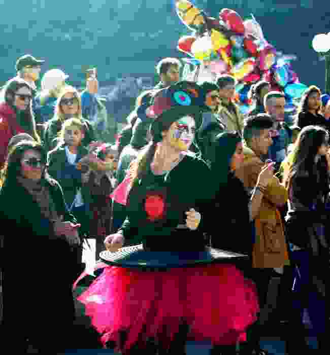 The annual Kotor carnival (Dreamstime)