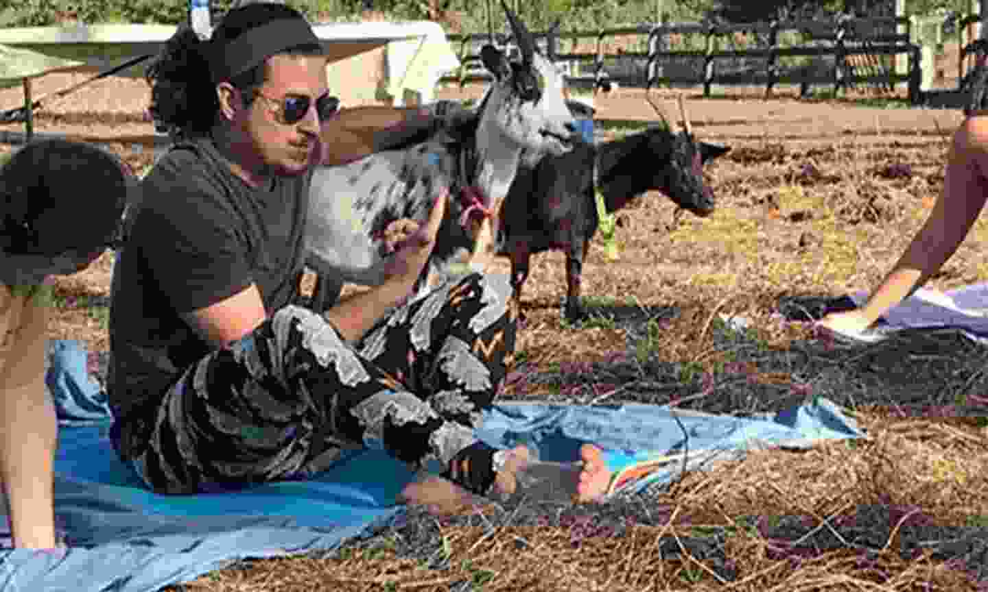 Get flexible with goat yoga