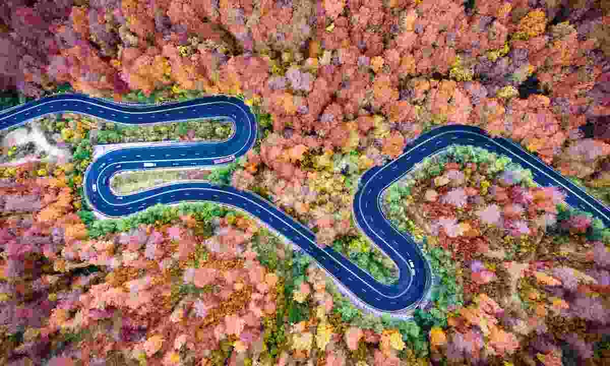 Road winding through autumn leaves in Transylvania (Dreamstime)