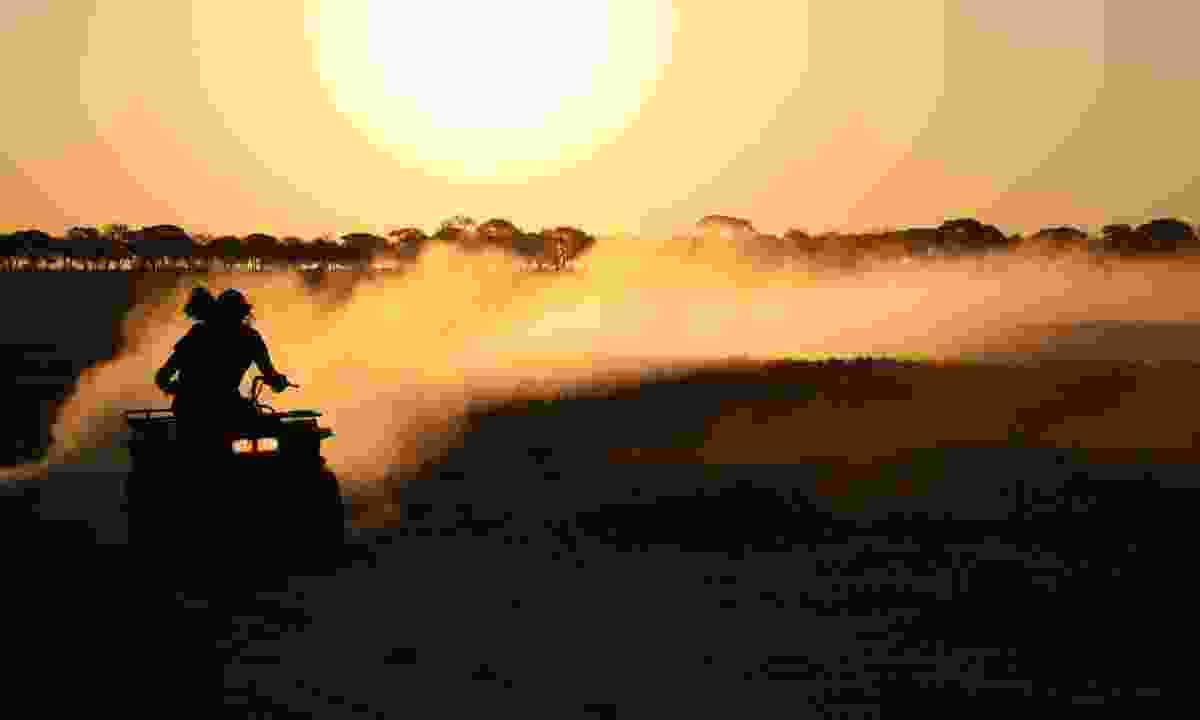 Kicking up dust in Botswana (Dreamstime)