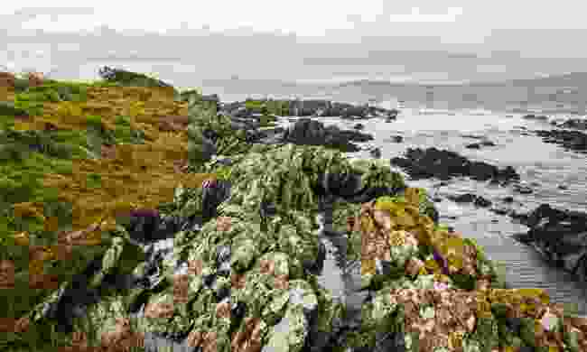 Helen's Bay, Bangor, County Down (Shutterstock)