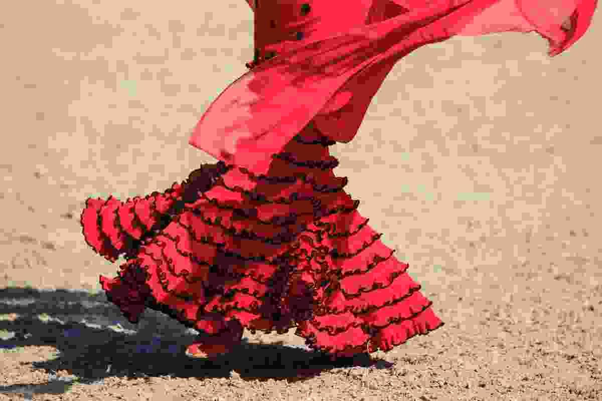 Flamenco dancer in Jerez (Dreamstime)