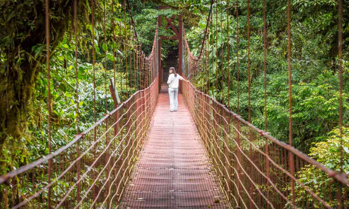 Suspended bridges in Monteverde (Shutterstock)