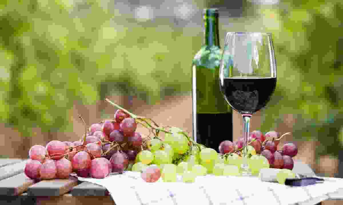 Go wine tasting in Argentina (Shutterstock)
