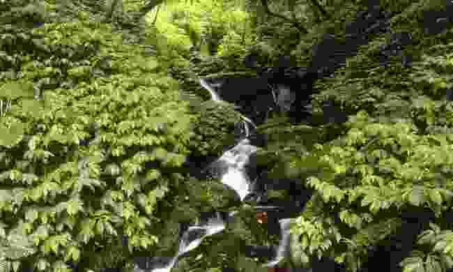 Xiao Wulai waterfall (Taiwan Tourism Bureau)
