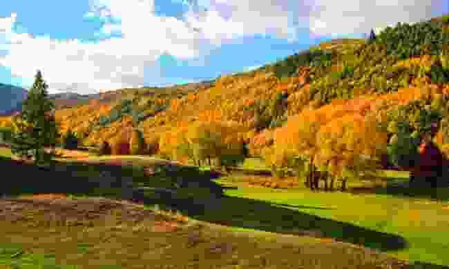 Autumn in Arrowtown (Dreamstime)