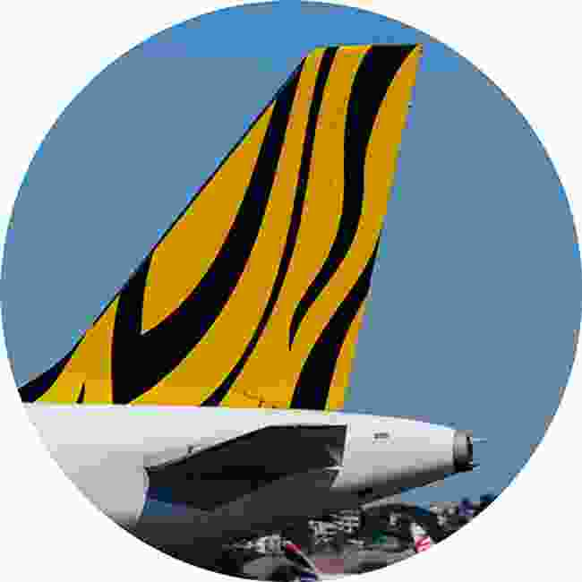 A tiger print tail on a Tiger Air plane (Shutterstock)